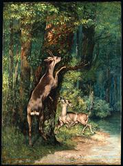 Gustave Courbet's <i>Deer in the Forest</i> was one of the first paintings in the MIA's collection. It was a gift of the St. Paul railroad tycoon James J. Hill in 1914.