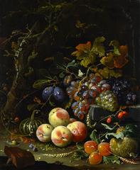 Abraham Mignon, <i>Still Life with Fruit, Foliage, and Insects</i>, about 1669, oil on canvas