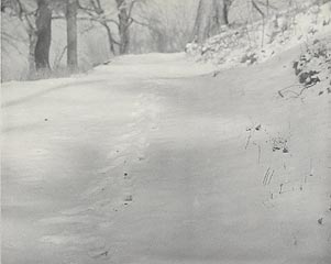 Willim B. Post<br>American, 1857 - 1921<br><I>Untitled [Footprints in Snow]</I><br>19th-20th century<br>Platinum print<br>The McClurg Photography Purchase Fund